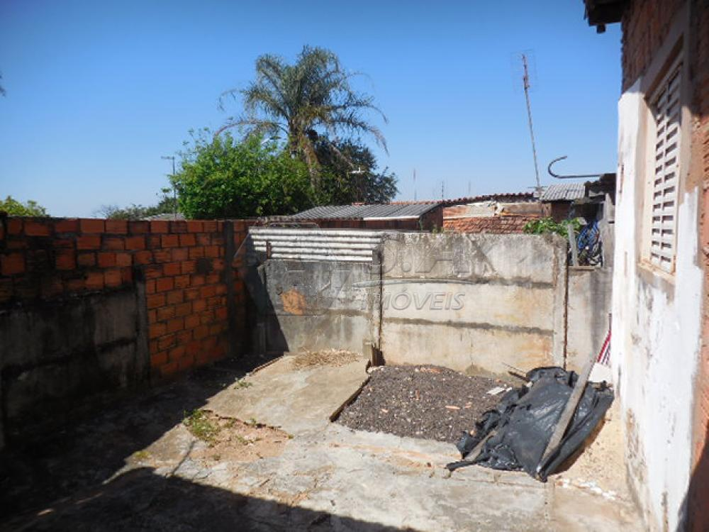 Alugar Casa / Padrão em Botucatu R$ 600,00 - Foto 9