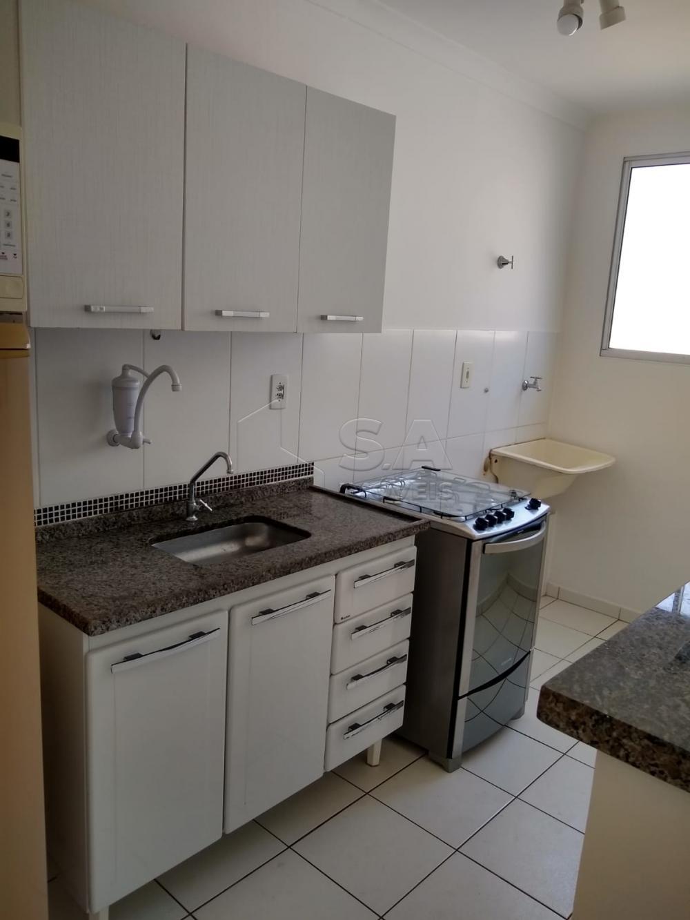 Alugar Apartamento / Mobiliado em Botucatu R$ 950,00 - Foto 3