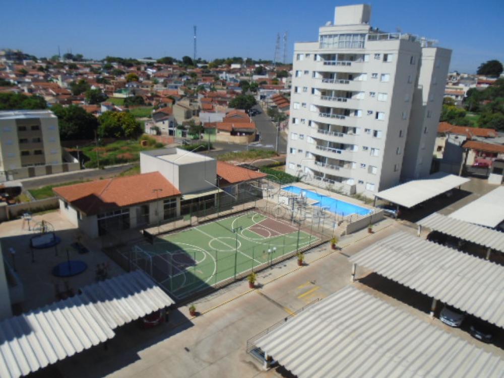 Alugar Apartamento / Padrão em Botucatu apenas R$ 1.600,00 - Foto 7