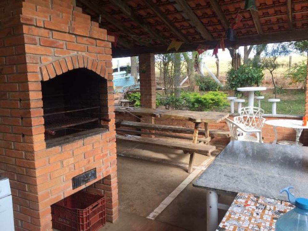 Comprar Rural / Sítio em Botucatu R$ 690.000,00 - Foto 5