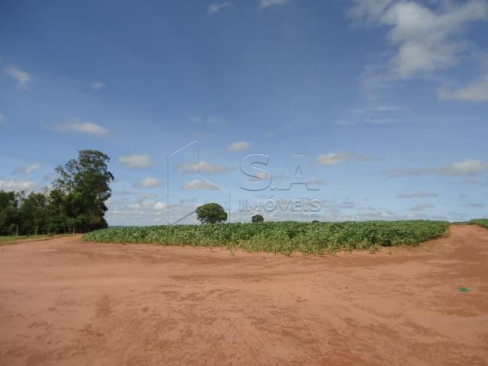 Comprar Rural / Chácara em Anhembi R$ 500.000,00 - Foto 2