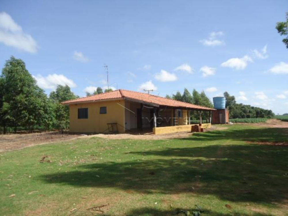 Comprar Rural / Chácara em Anhembi R$ 500.000,00 - Foto 1