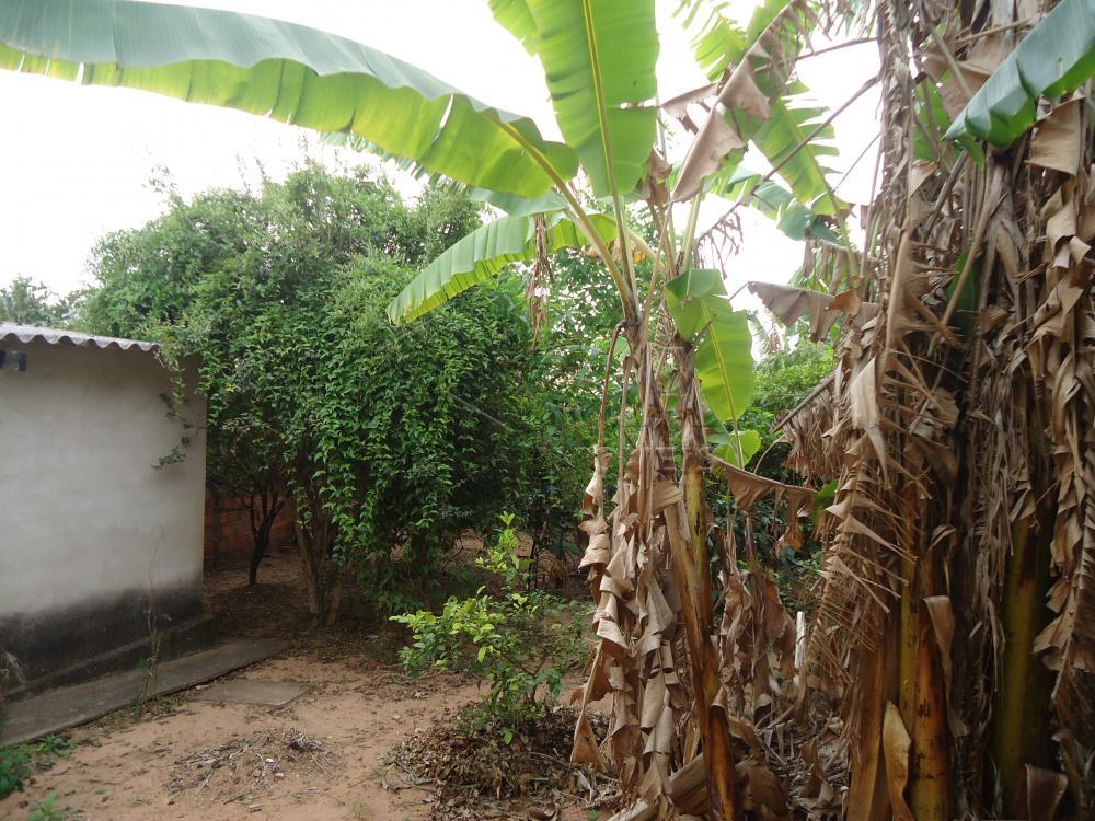 Comprar Casa / Padrão em Botucatu apenas R$ 140.000,00 - Foto 6