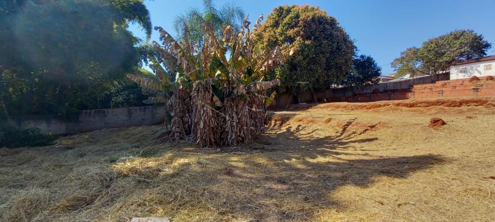 Comprar Terreno / Padrão em Botucatu R$ 500,00 - Foto 4