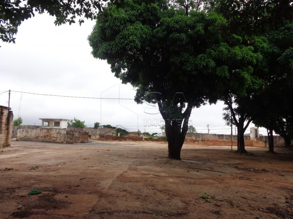 Alugar Terreno / Padrão em Botucatu apenas R$ 3.000,00 - Foto 4