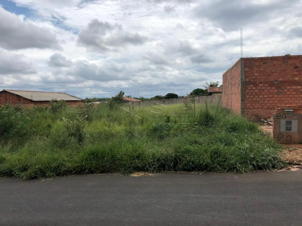 Comprar Terreno / Padrão em Botucatu apenas R$ 50.000,00 - Foto 2