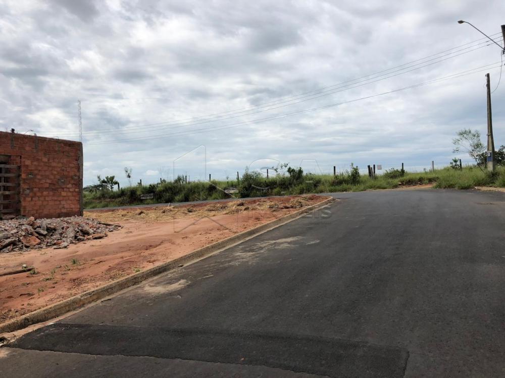 Comprar Terreno / Padrão em Botucatu apenas R$ 50.000,00 - Foto 1