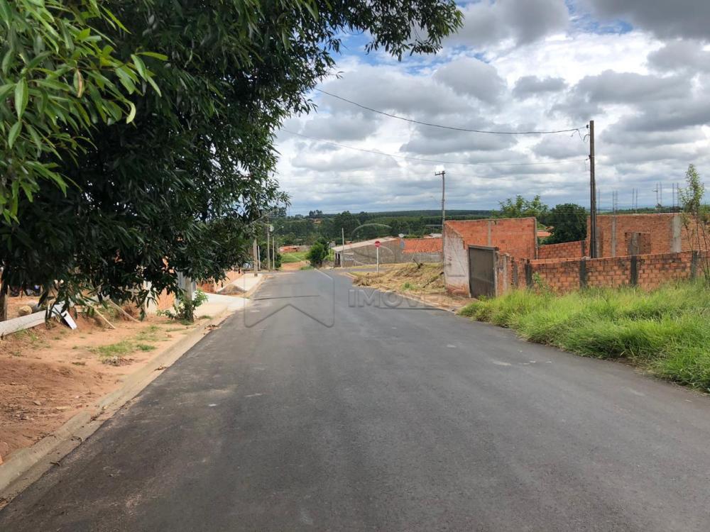 Comprar Terreno / Padrão em Botucatu apenas R$ 50.000,00 - Foto 3