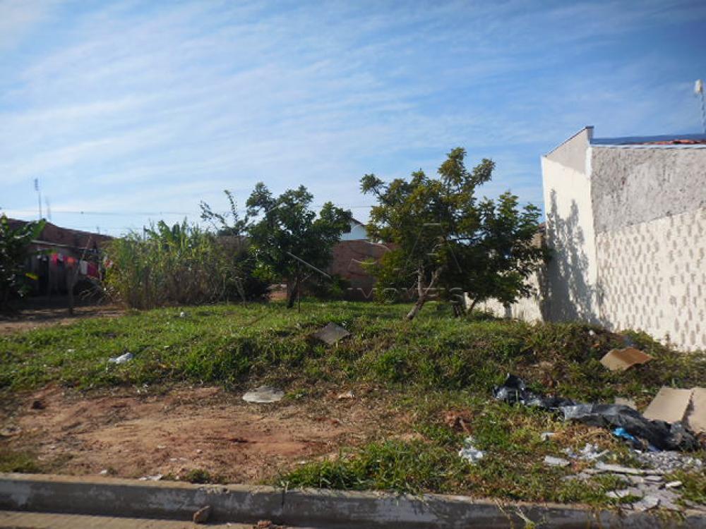 Comprar Terreno / Padrão em Botucatu apenas R$ 80.000,00 - Foto 1