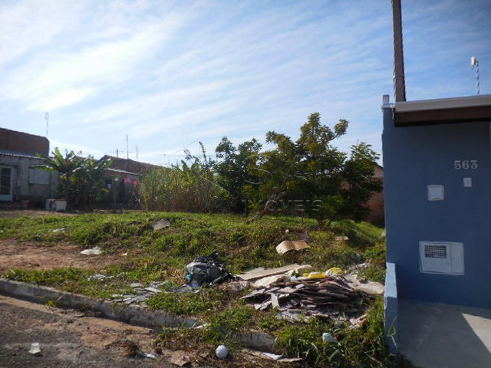 Comprar Terreno / Padrão em Botucatu apenas R$ 80.000,00 - Foto 2