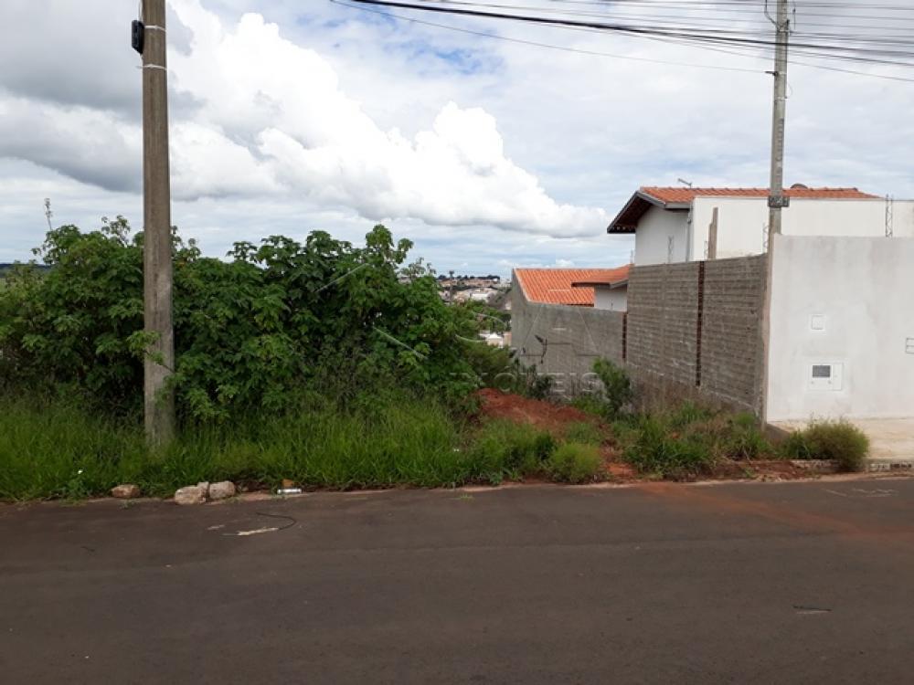 Comprar Terreno / Padrão em Botucatu apenas R$ 70.000,00 - Foto 1