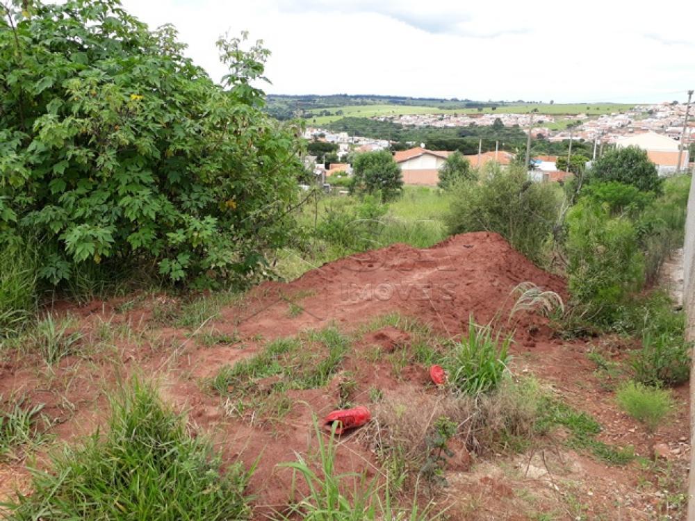 Comprar Terreno / Padrão em Botucatu apenas R$ 70.000,00 - Foto 2