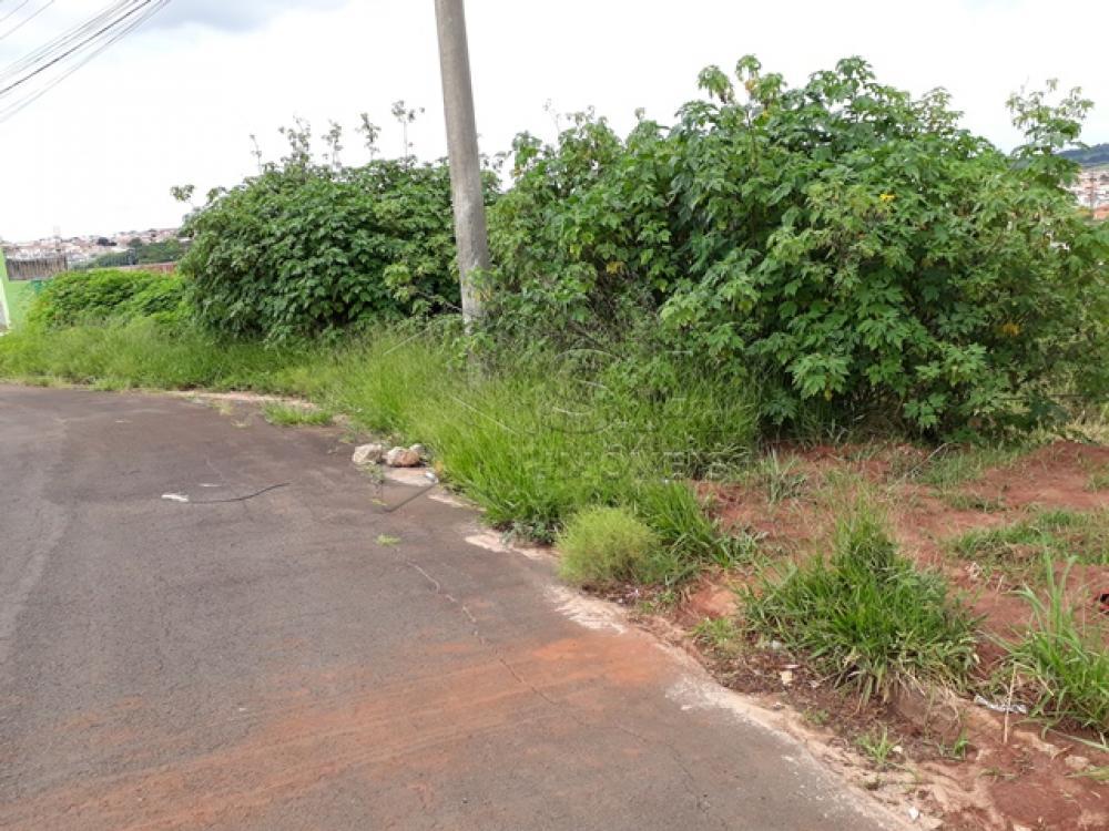 Comprar Terreno / Padrão em Botucatu apenas R$ 70.000,00 - Foto 3