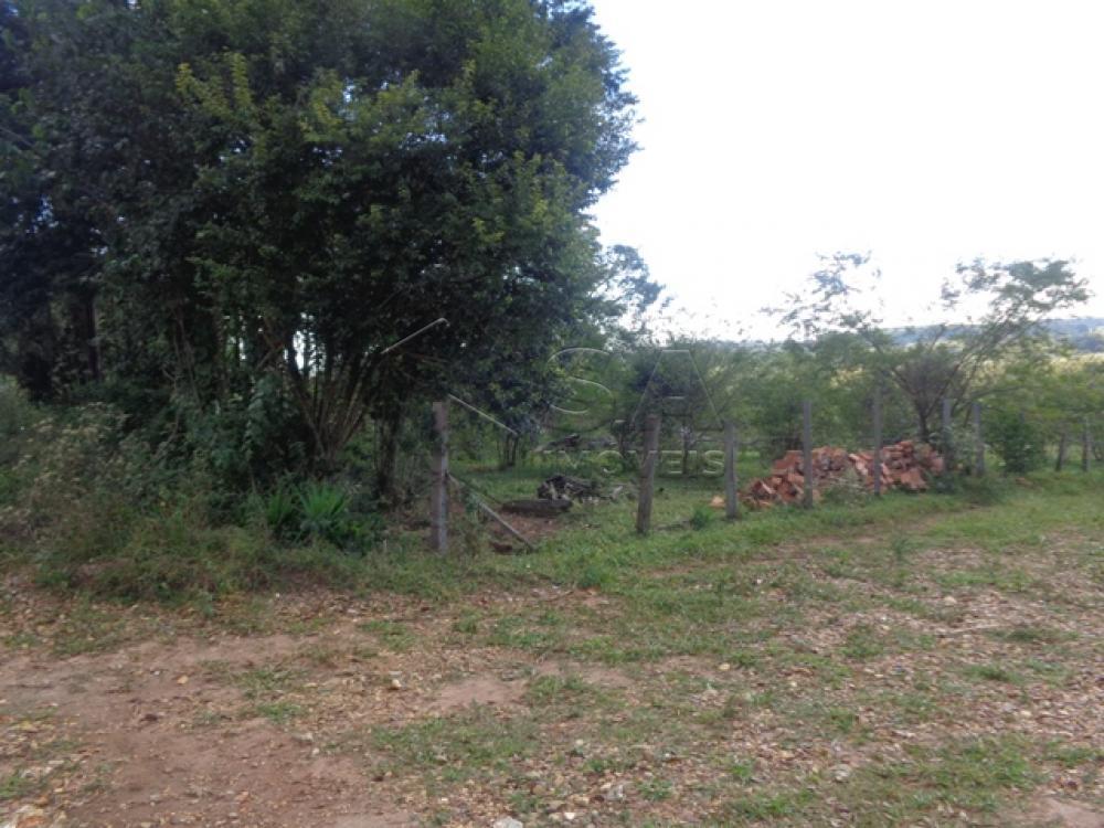 Comprar Terreno / Padrão em Botucatu R$ 110.000,00 - Foto 1