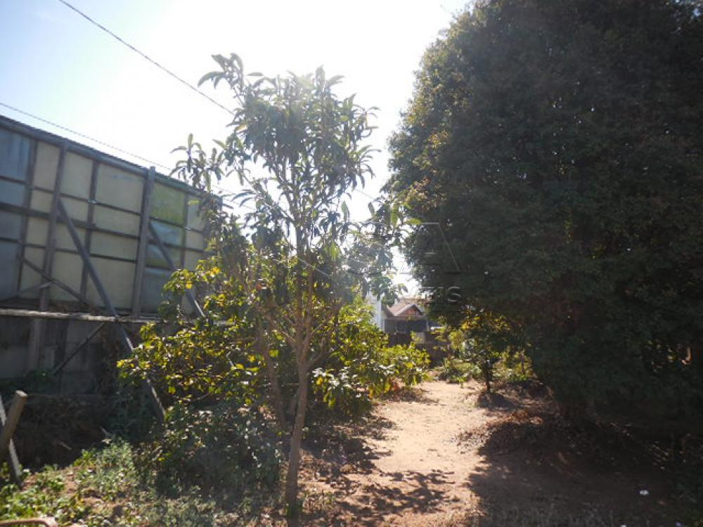 Comprar Terreno / Padrão em Botucatu apenas R$ 900.000,00 - Foto 2