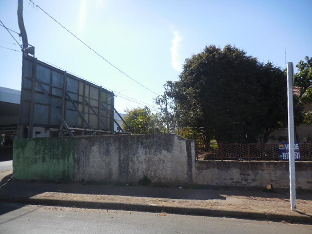 Comprar Terreno / Padrão em Botucatu apenas R$ 900.000,00 - Foto 3