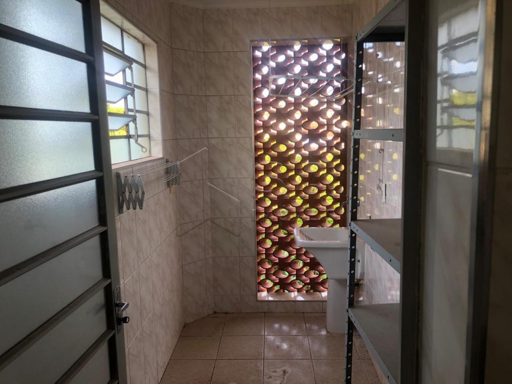 Alugar Apartamento / Mobiliado em Botucatu apenas R$ 800,00 - Foto 3