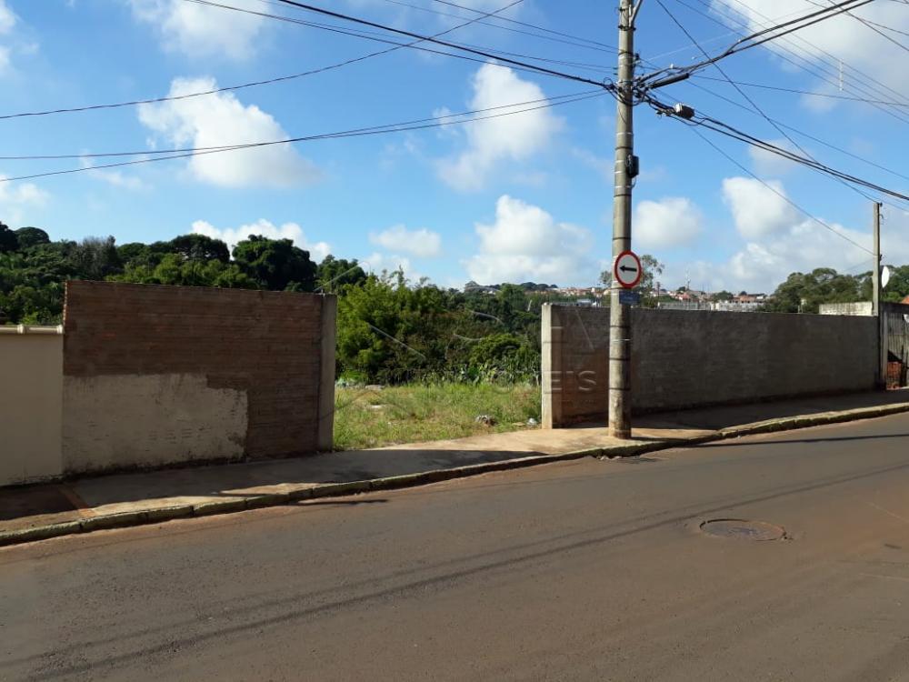 Comprar Terreno / Padrão em Botucatu apenas R$ 230.000,00 - Foto 1