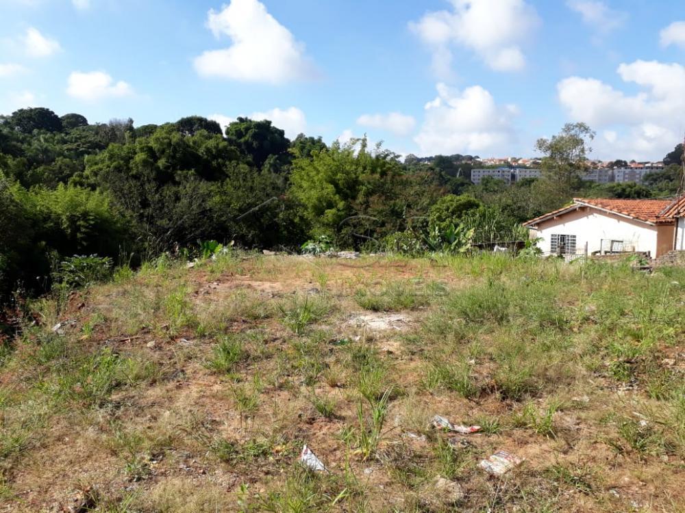 Comprar Terreno / Padrão em Botucatu apenas R$ 230.000,00 - Foto 3