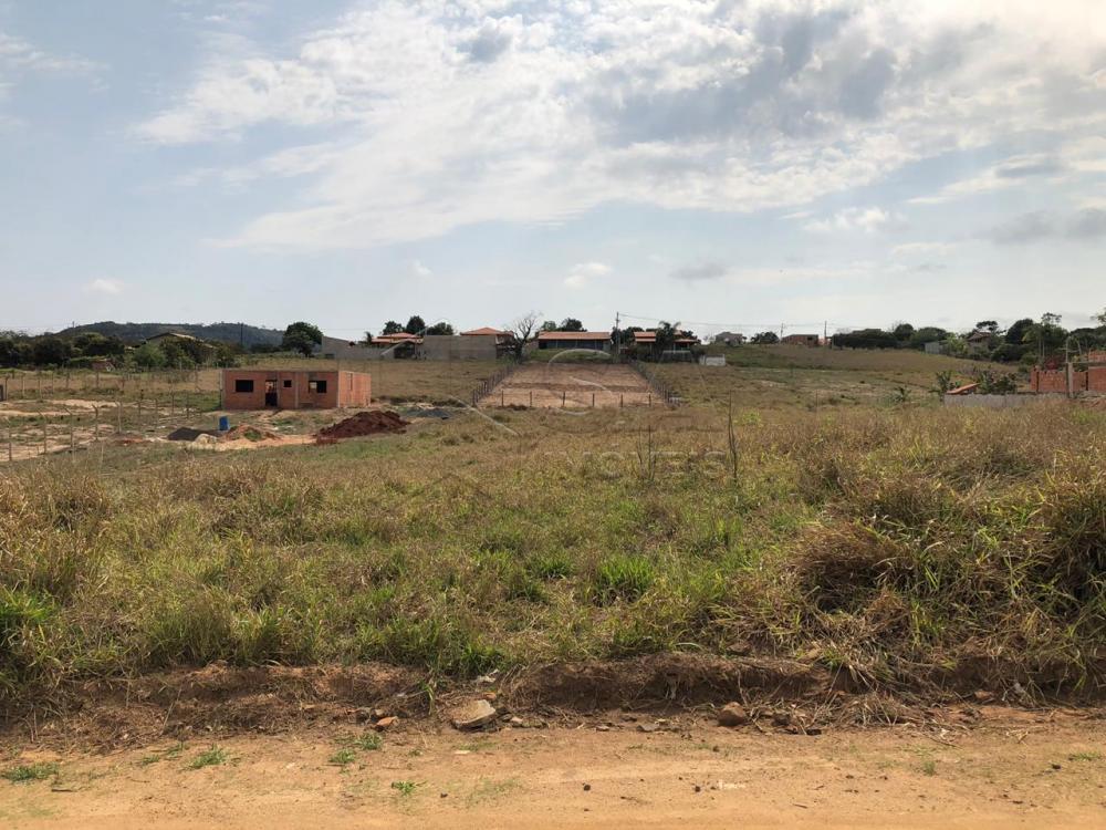 Comprar Terreno / Padrão em Pardinho apenas R$ 100.000,00 - Foto 2