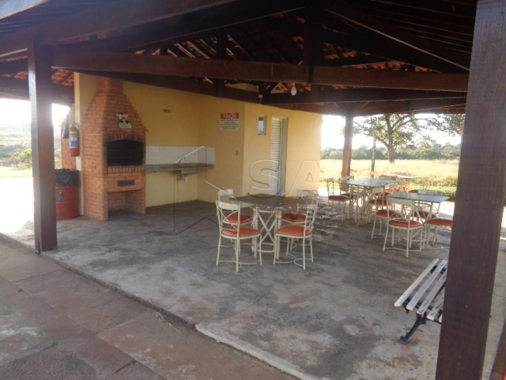 Alugar Apartamento / Padrão em Botucatu apenas R$ 450,00 - Foto 5