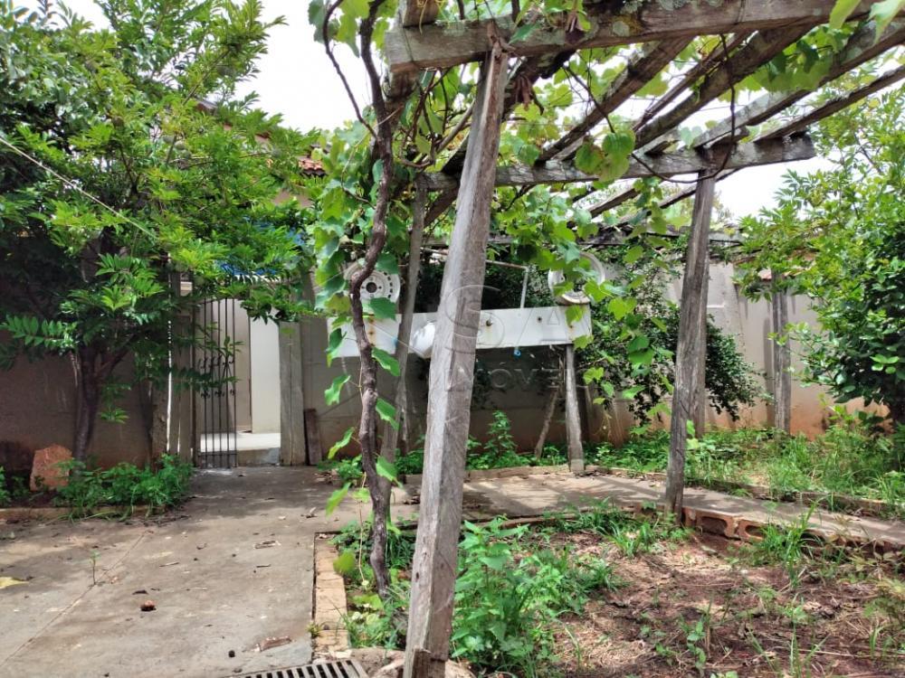 Alugar Casa / Padrão em Botucatu apenas R$ 1.300,00 - Foto 17