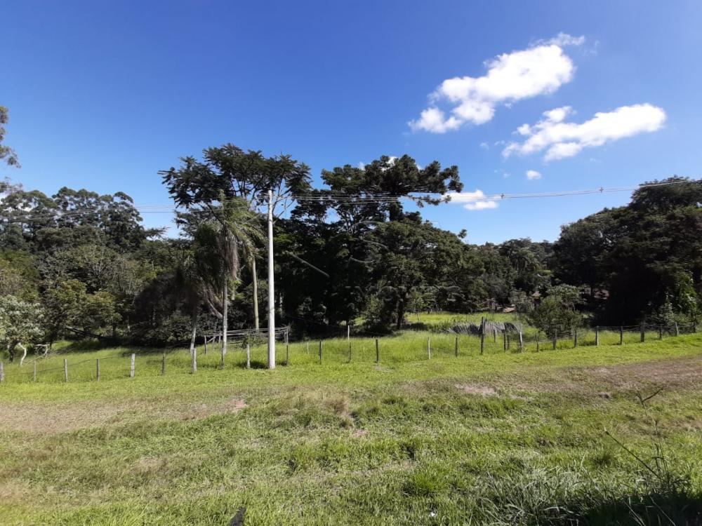 Comprar Rural / Chácara em Botucatu R$ 2.500.000,00 - Foto 12