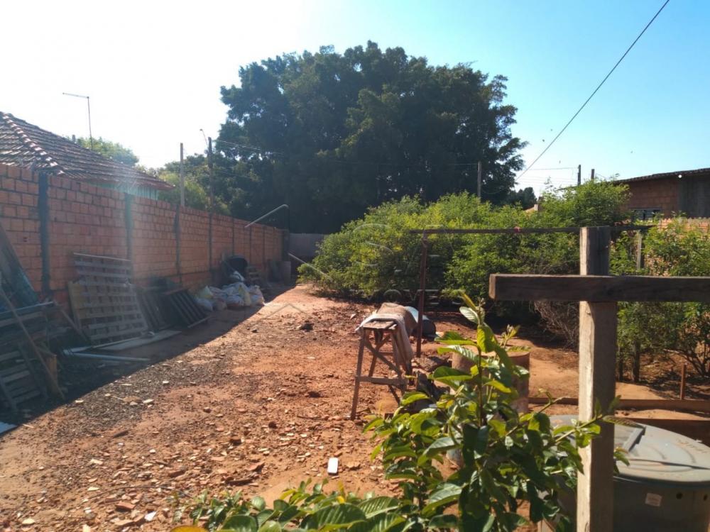 Comprar Terreno / Padrão em Botucatu apenas R$ 85.000,00 - Foto 3