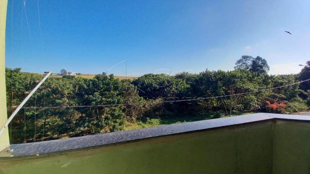 Alugar Casa / Sobrado em Botucatu R$ 1.350,00 - Foto 13
