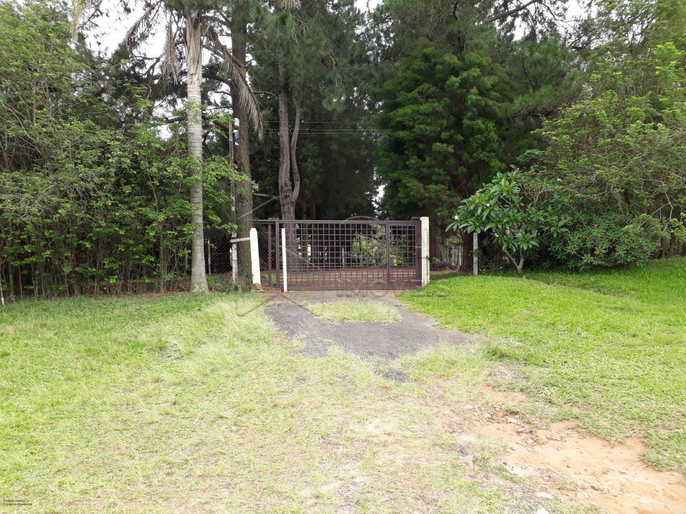 Comprar Rural / Chácara em Botucatu R$ 1.500.000,00 - Foto 1