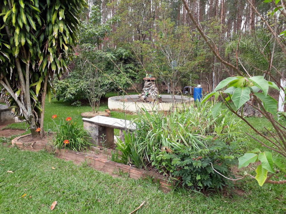 Comprar Rural / Chácara em Botucatu R$ 1.500.000,00 - Foto 8