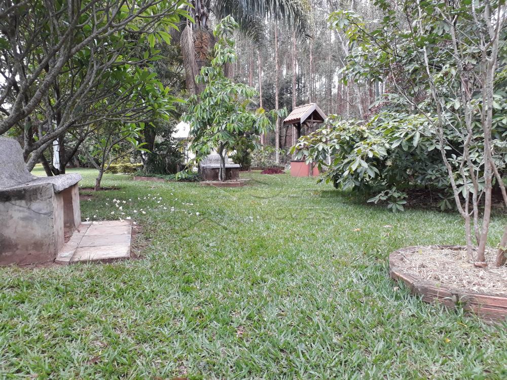 Comprar Rural / Chácara em Botucatu R$ 1.500.000,00 - Foto 10