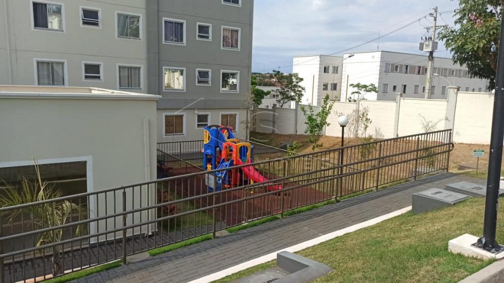 Alugar Apartamento / Padrão em Botucatu R$ 1.000,00 - Foto 11