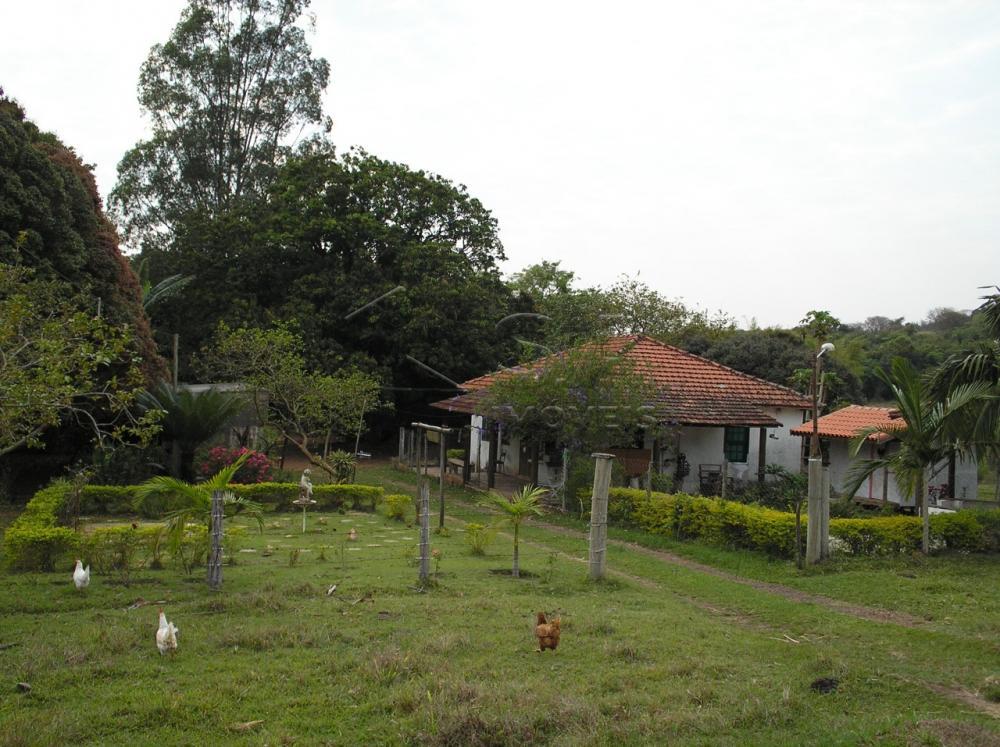Comprar Rural / Sítio em Botucatu R$ 2.200.000,00 - Foto 3