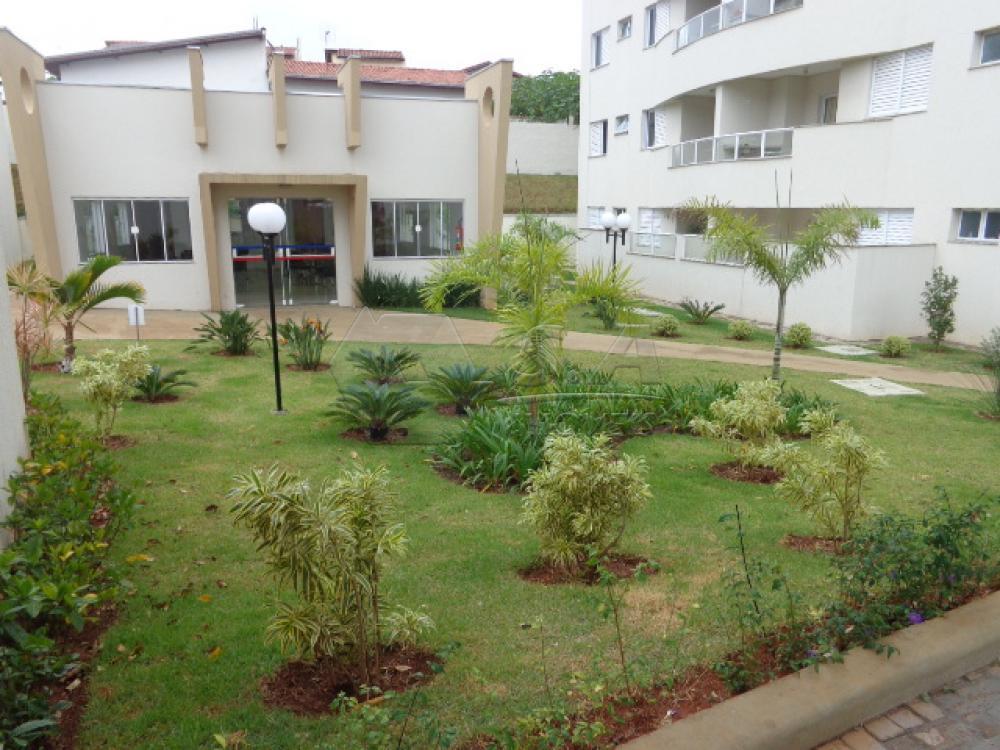 Alugar Apartamento / Padrão em Botucatu apenas R$ 1.600,00 - Foto 22