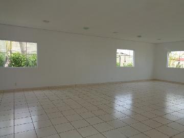 Alugar Apartamento / Padrão em Botucatu R$ 950,00 - Foto 14