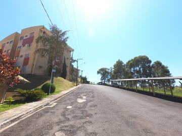 Alugar Apartamento / Mobiliado em Botucatu R$ 1.200,00 - Foto 14