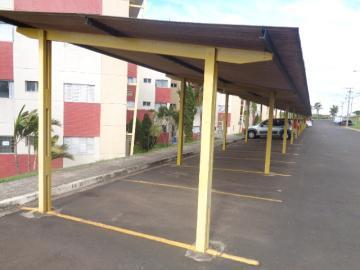 Alugar Apartamento / Mobiliado em Botucatu R$ 1.200,00 - Foto 15