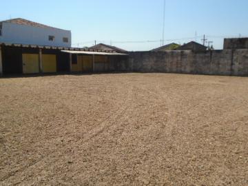 Alugar Comercial / Galpão - Barracão em São Manuel. apenas R$ 4.036,43