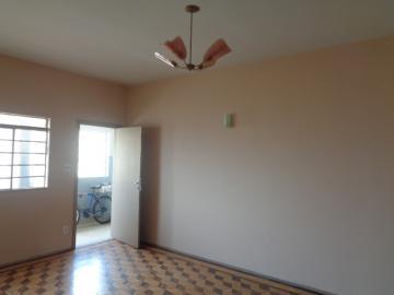 Alugar Comercial / Sala em Botucatu. apenas R$ 1.200,00