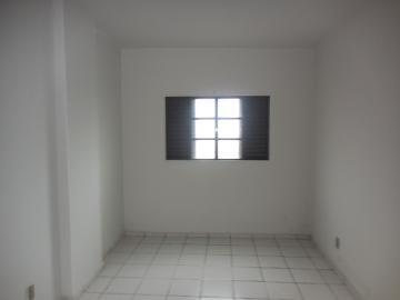 Alugar Apartamento / Padrão em Botucatu R$ 900,00 - Foto 4