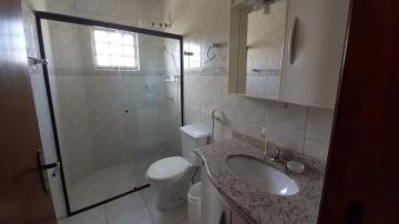 Alugar Apartamento / Mobiliado em Botucatu R$ 1.000,00 - Foto 10