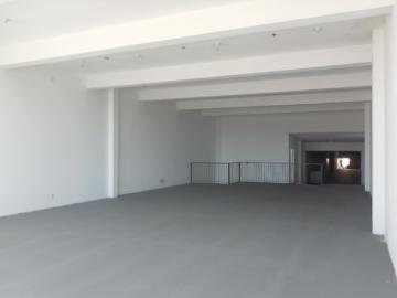 Botucatu Centro Estabelecimento Locacao R$ 3.900,00  2 Vagas Area construida 500.00m2