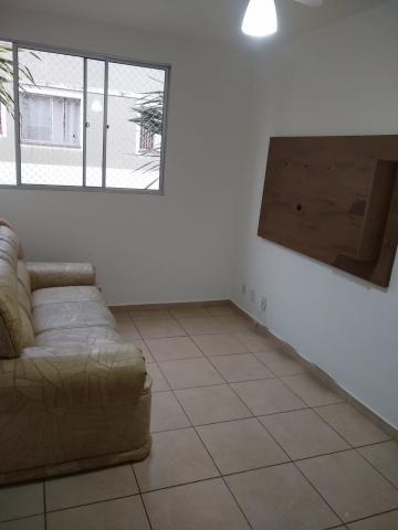 Alugar Apartamento / Mobiliado em Botucatu R$ 950,00 - Foto 5
