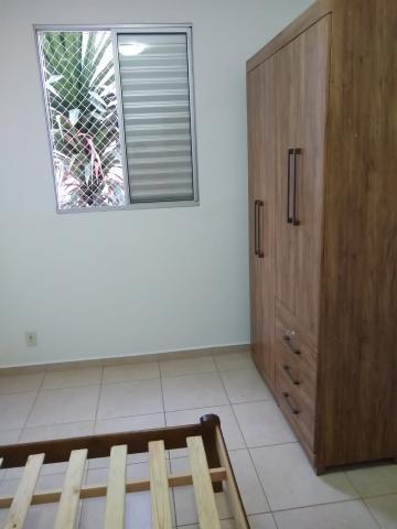 Alugar Apartamento / Mobiliado em Botucatu R$ 950,00 - Foto 8