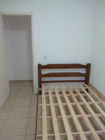 Alugar Apartamento / Mobiliado em Botucatu R$ 950,00 - Foto 10
