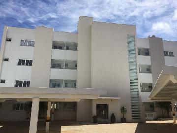 Alugar Apartamento / Padrão em Botucatu. apenas R$ 1.250,00