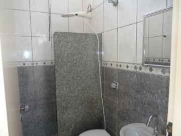 Alugar Casa / Padrão em Botucatu R$ 950,00 - Foto 6