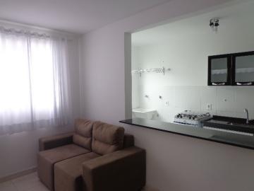 Alugar Apartamento / Padrão em Botucatu R$ 950,00 - Foto 5