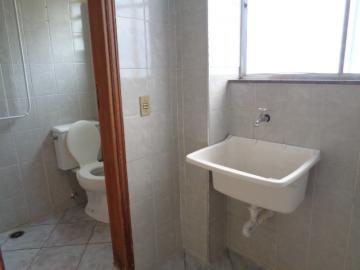 Alugar Apartamento / Padrão em Botucatu R$ 800,00 - Foto 7